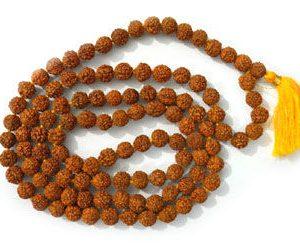 Holy Rudraksha Japamala 6mm